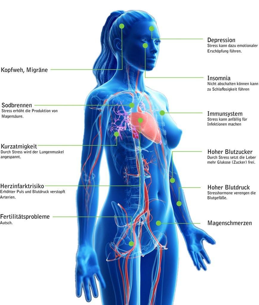 Diese Symptome kann Stress auslösen